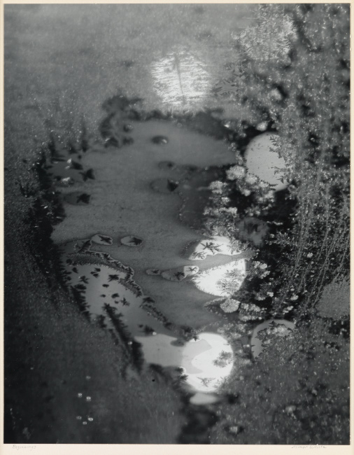 Minor White, Beginnings, Rochester, New York (frosted window), 1952.